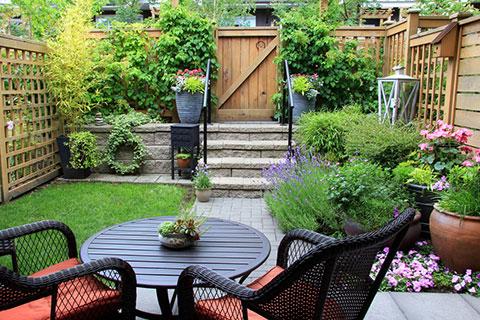 small-backyard-2