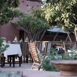 Garden Trends – a guest post by LittleGreenShed