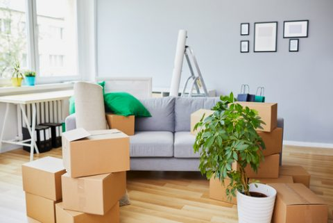 4 Steps to Store Furniture Like a Pro