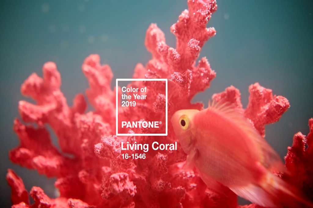 Living Coral – Colour of the Year 2019
