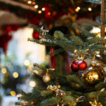 Christmas Trees: Go Real Or Fake?