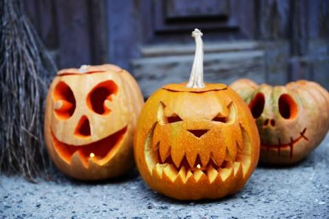 Que faire de vos citrouilles après Halloween?