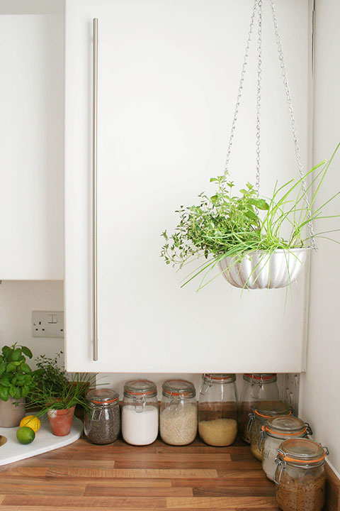 Hanging-planter-with-herbs-in-kitchen
