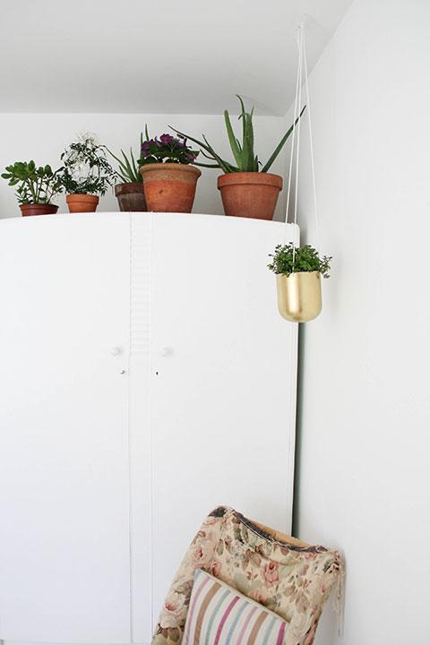 Wardrobe-plants