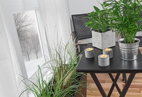Hoe houd je je planten in leven als je op vakantie bent?
